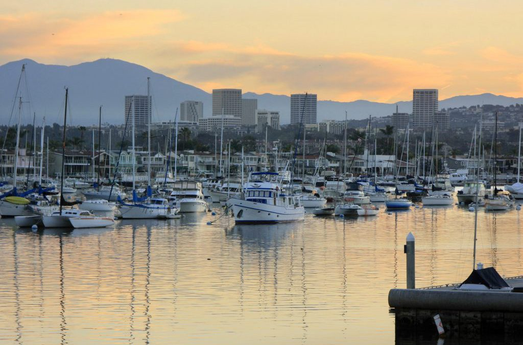 Harbor Update: Moorings and West Anchorage
